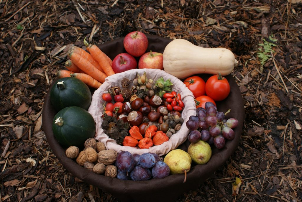 fruits légumes immunité