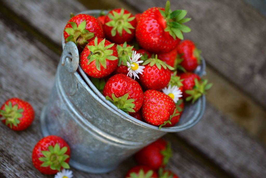 fraise printemps aliment
