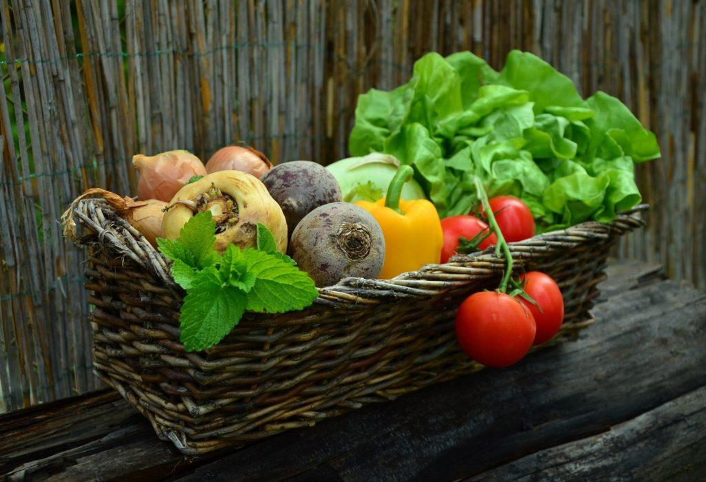 Alimentation vitaminée