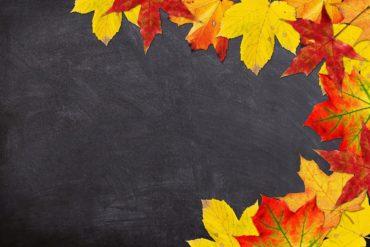 Offre Spéciale – Semaine Mondiale de la Réflexologie du 21 au 27 septembre