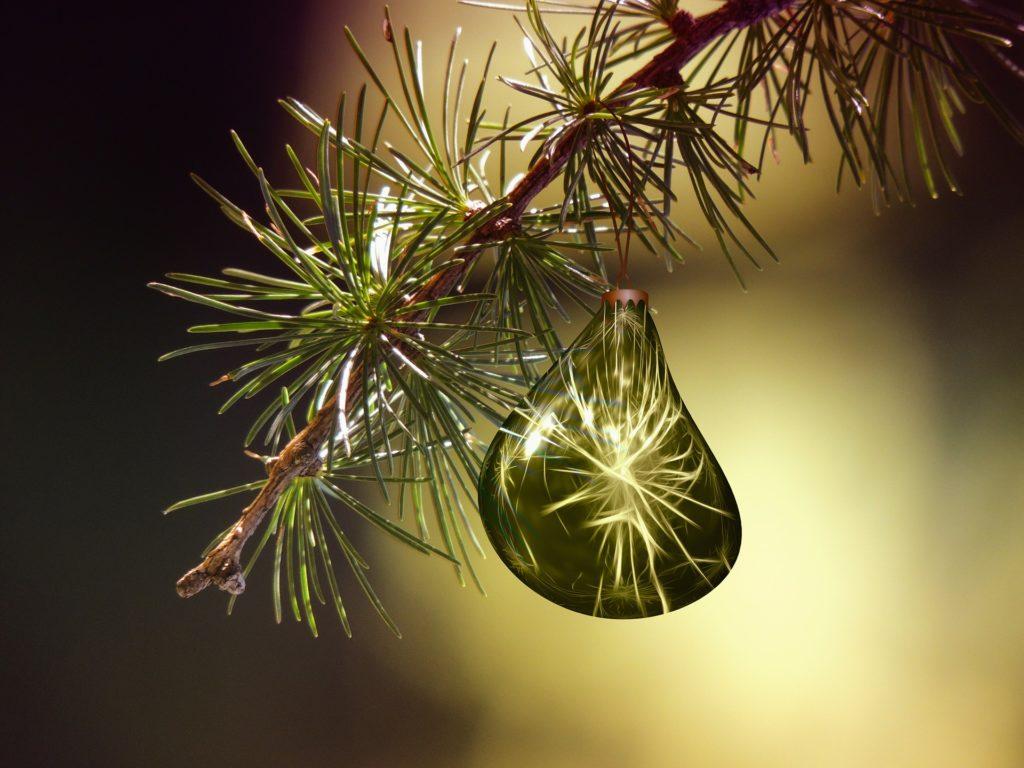 Noël décor nature